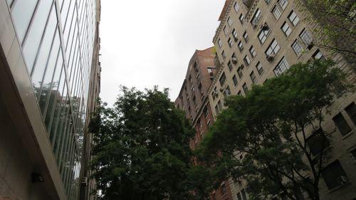 NYC 115